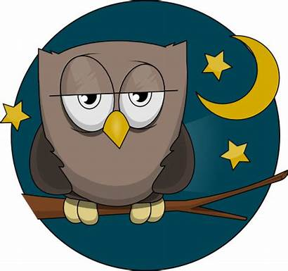 Owl Clip Clipart Night Sleepy Owls Moon