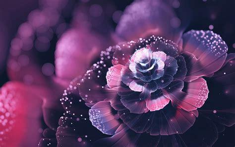 fond d écran fleur fonds d cran fleurs blanches maximumwall fond d cran pc