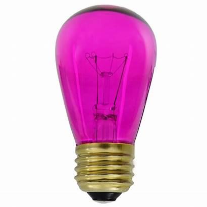 Pink Transparent Bulbs Bulb Base S14 Medium