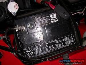 1995 Ford Mustang Cobra R Motorcraft Battery I.D. picture | SuperMotors.net