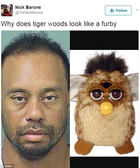 Tiger Meme Tiger Woods Best Mugshot Memes