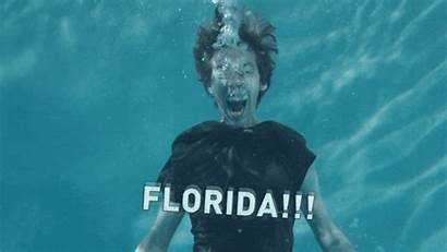 Florida March Improvement Madness Giphy Break Gifs