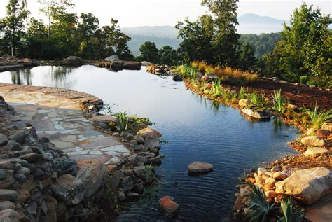 Swimming Pond : Natural Swimming Pools/ponds Design & Construction