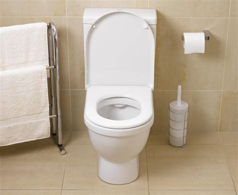 fix a flushing toilet how to repair common toilet problems