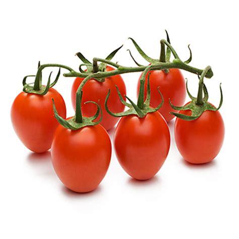 tomaten paprika gemüse dattel cherry tomaten fructasus
