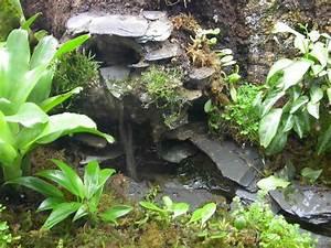 Terrarium Steine Kaufen : miniature waterfall in your terrarium fr sche steine ~ Michelbontemps.com Haus und Dekorationen
