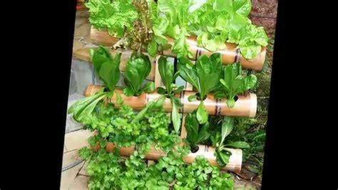 Bamboo Vertical Garden by Vertical Gardening For Balconies