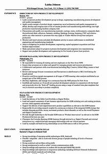 new product development resume samples velvet jobs With new product development resume sample