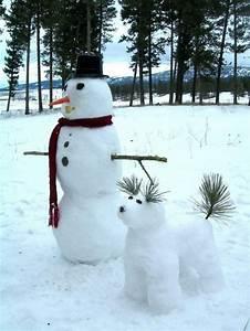 bonhomme de neige origine et idees de decor de noel With decoration d un petit jardin 11 boule de neige faire une bataille