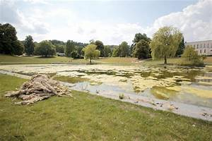 Algen Im Teich Entfernen : algen im b rgerpark teich ~ Orissabook.com Haus und Dekorationen