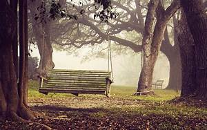 Bench Full HD Wallpaper and Background Image   2560x1600 ...