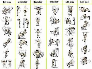 Best 6 Day Workout Routines For Men