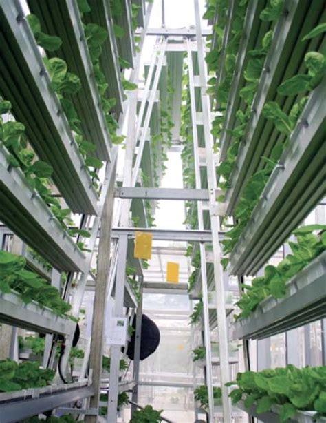 commercial cuisine les fermes verticales un premier essai commercial à