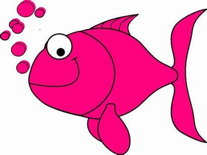 Fish Salmon Pink Clipart Clip Cliparts Vector