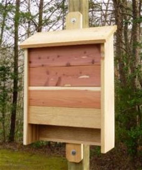 bat house plans other files patterns and templates