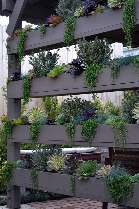 Vertical Succulent Garden Indoor by 70 Indoor And Outdoor Succulent Garden Ideas Shelterness