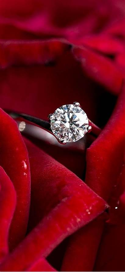 Marriage Roses Ring Devices Ios