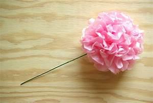 Rosen Aus Seidenpapier : seidenpapier blumen basteln my blog ~ Lizthompson.info Haus und Dekorationen