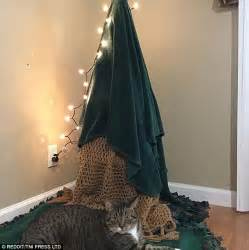 families pet proof  christmas trees daily mail