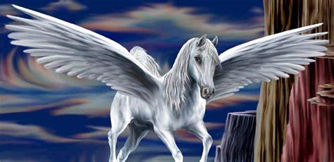cavalo alado fotos  imagens