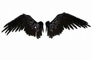 Angel Wings Stock by wolverine041269 on DeviantArt