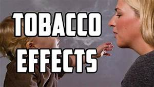 Tobacco Effects  Short-term And Long-term