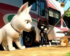 Bolt One Super Dog Cartoon Movie Characters Wallpaper