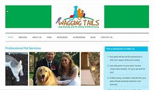 dog walking website by brown mouse productions With dog sitting website