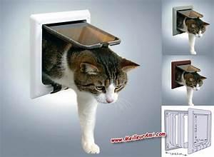Trappe Pour Chat : trappe porte pour chat khenghua ~ Dode.kayakingforconservation.com Idées de Décoration