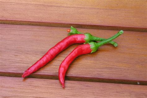 substitute for pepper what s a good substitute for cayenne pepper pepperscale
