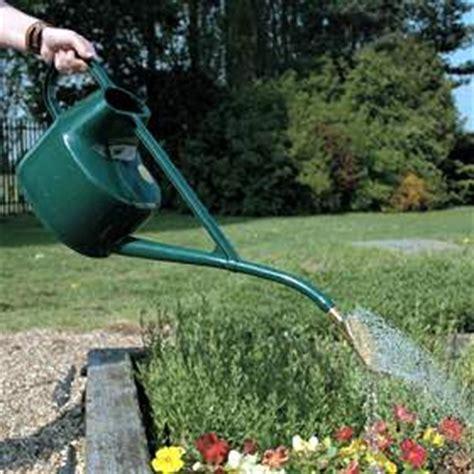 cuidado de plantas  jardines como regar las plantas