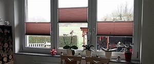 Was Ist Ein Plissee : trendige plissees punkten als dekorative allesk nner am fenster ~ Bigdaddyawards.com Haus und Dekorationen