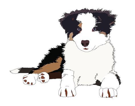 Border Collie Puppy Drawing Wwwimgkidcom The Image