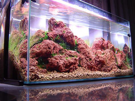 Lava L Fish Tank Diy by Lava Rock The World V2 0 Aquascaping World Forum