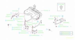 Subaru Forester Evaporative Emissions System Lines
