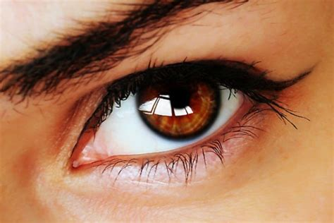 brown eye colors what does your eye color say about you njoy vision