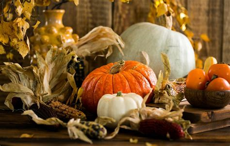 6 Surprising Facts About The Origin Of Thanksgiving You ...