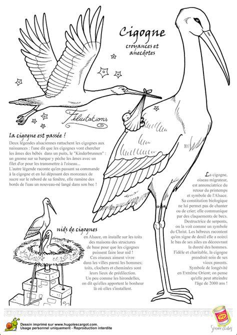 dictionnaire cuisine coloriage oiseau legende cigogne sur hugolescargot com