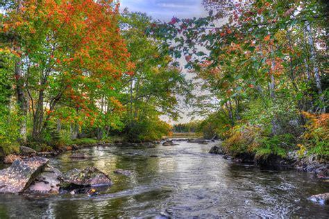 drivers bureau fond ecran hd paysage rivière forêt automne feuille