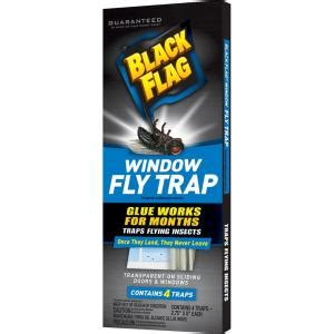 black flag window fly trap  pack hg   home depot