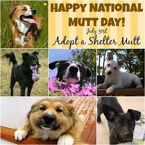 Happy, National, Mutt, Day