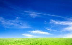 Blue, Sky, And, Green, Grass, Wallpapers