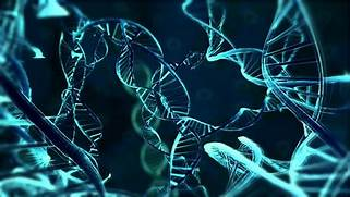 From 2014 igem org Ima...Cool Dna Science Backgrounds