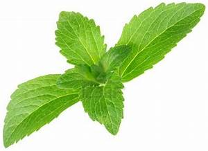 STEVIA sweetener: What Is Stevia?