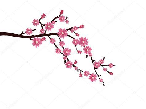 foto de Flor de cerejeira Vetor de Stock © andreakaulitzki #5064225