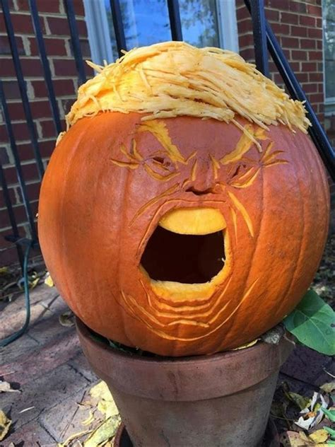 latest craze  pumpkin carvings  present trumpkins
