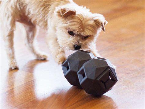 dog puzzles ideas  pinterest diy puzzle toys
