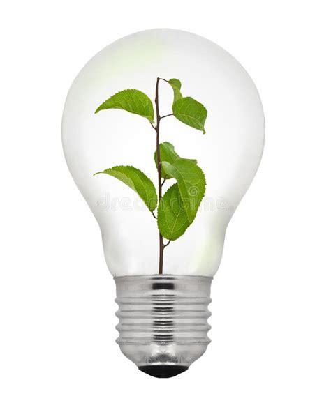 green energy light bulb stock photos image 28415023