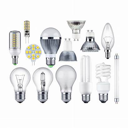 Bulbs Recycle Fluorescent Types Tubes Dispose Led