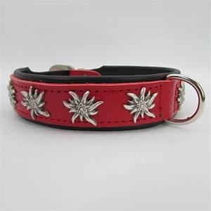 Hundehalsband Leder, Lederhalsband günstig bei zooplus